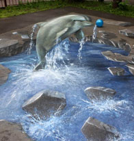 Anamorphic painting of a dolphin jumping in a pool in the middle of the street
